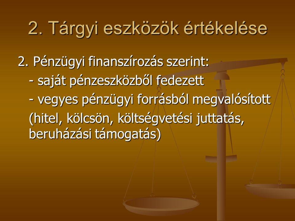 2. Tárgyi eszközök értékelése 2. Pénzügyi finanszírozás szerint: - saját pénzeszközből fedezett - vegyes pénzügyi forrásból megvalósított (hitel, kölc
