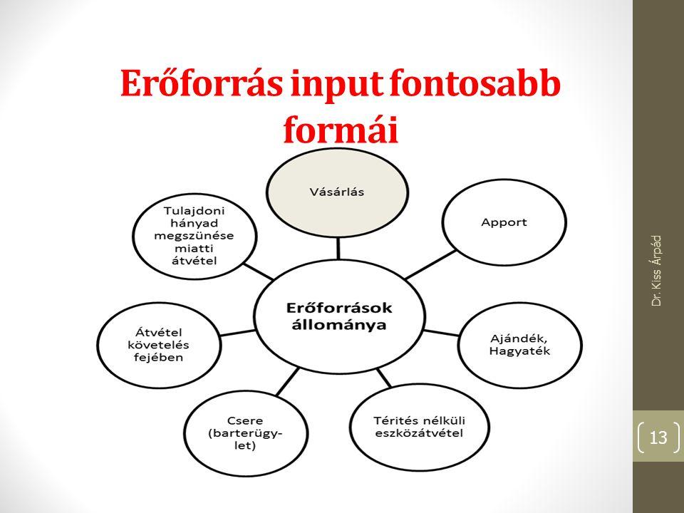 Erőforrás input fontosabb formái Dr. Kiss Árpád 13