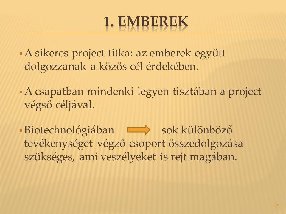  A sikeres project titka: az emberek együtt dolgozzanak a közös cél érdekében.