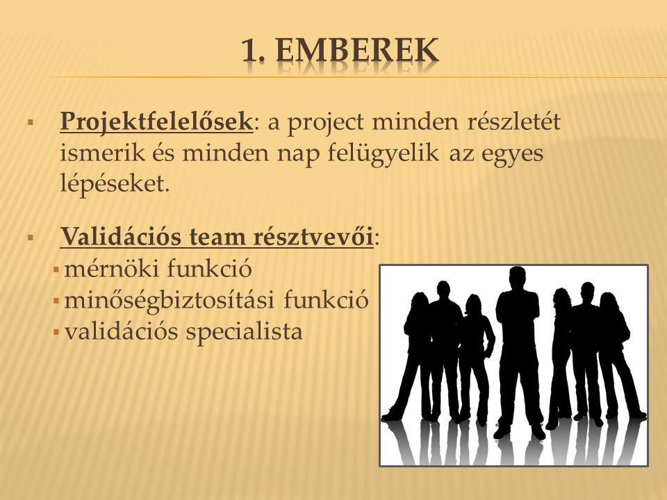  Projektfelelősek: a project minden részletét ismerik és minden nap felügyelik az egyes lépéseket.  Validációs team résztvevői:  mérnöki funkció 