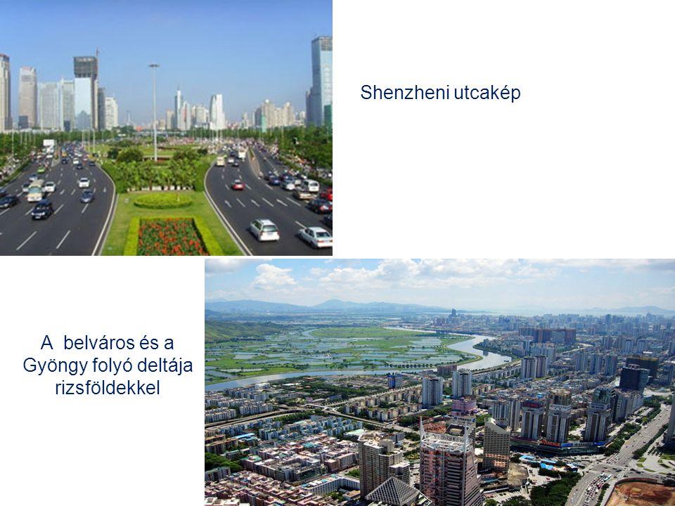 A belváros és a Gyöngy folyó deltája rizsföldekkel Shenzheni utcakép