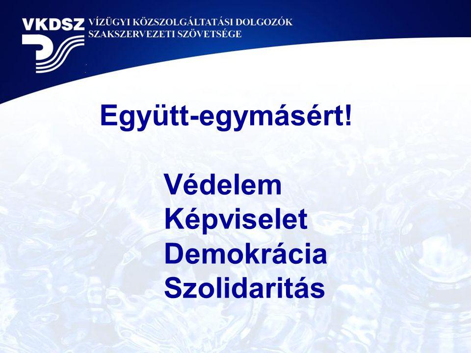 Együtt-egymásért! Védelem Képviselet Demokrácia Szolidaritás