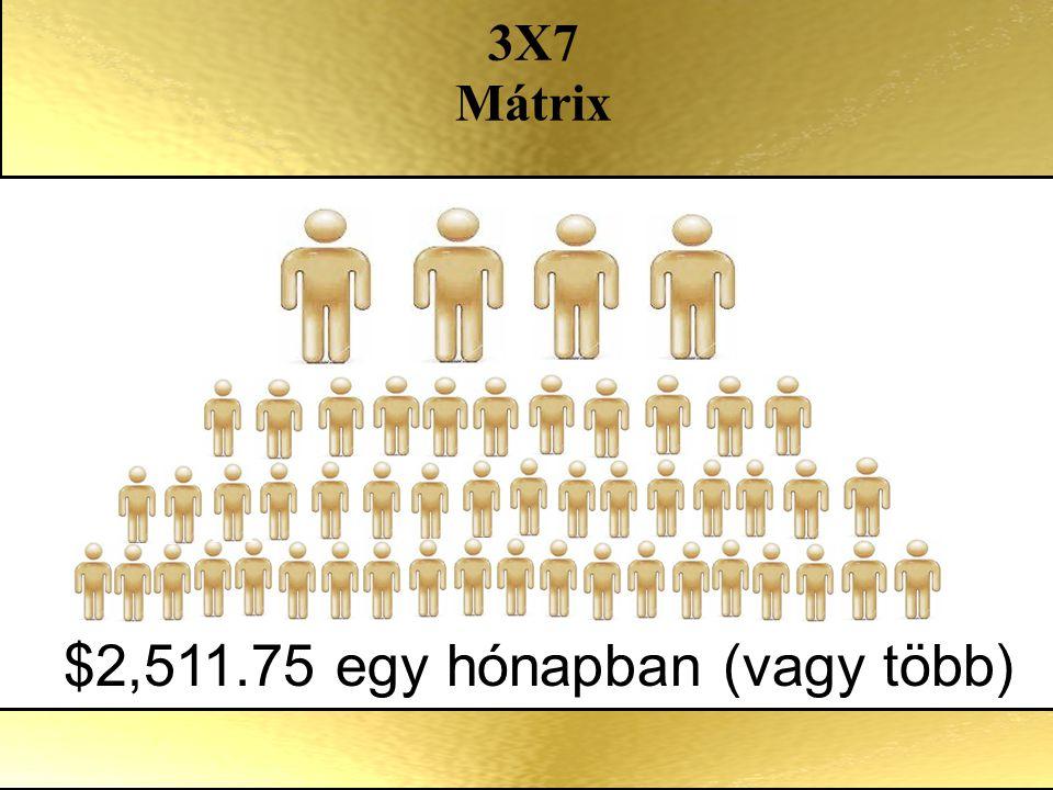$2,511.75 egy hónapban (vagy több) 3X7 Mátrix