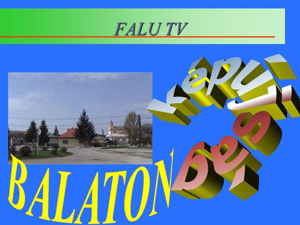 FALU TV