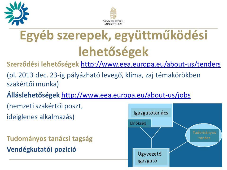 12 Egyéb szerepek, együttműködési lehetőségek Szerződési lehetőségek http://www.eea.europa.eu/about-us/tendershttp://www.eea.europa.eu/about-us/tenders (pl.