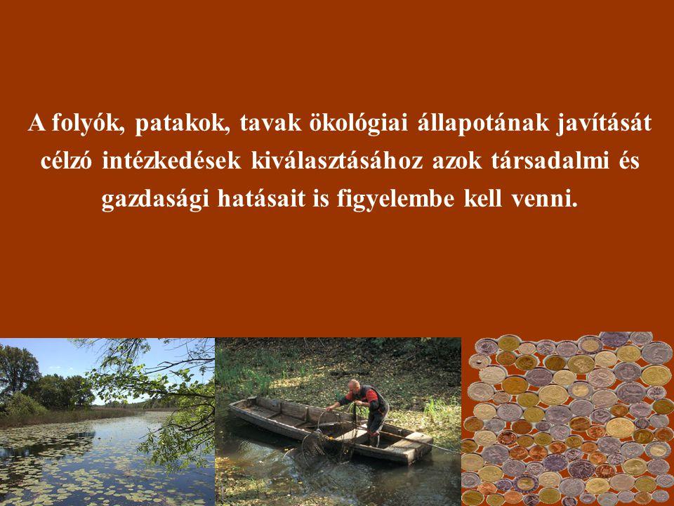 Néhány példa a vizek állapotának javítását szolgáló intézkedések lehetséges társadalmi hatásairól: • Vonzóbb tájkép kialakulása, ami a turizmus fellendítésében is segít.