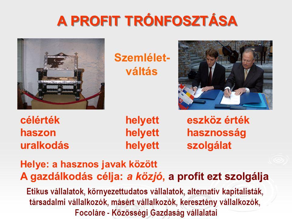 A PROFIT TRÓNFOSZTÁSA Szemlélet- váltás célérték helyett eszköz érték haszon helyett hasznosság uralkodás helyett szolgálat Helye: a hasznos javak között A gazdálkodás célja: a közjó, a profit ezt szolgálja Etikus vállalatok, környezettudatos vállalatok, alternatív kapitalisták, társadalmi vállalkozók, másért vállalkozók, keresztény vállalkozók, Focoláre - Közösségi Gazdaság vállalatai