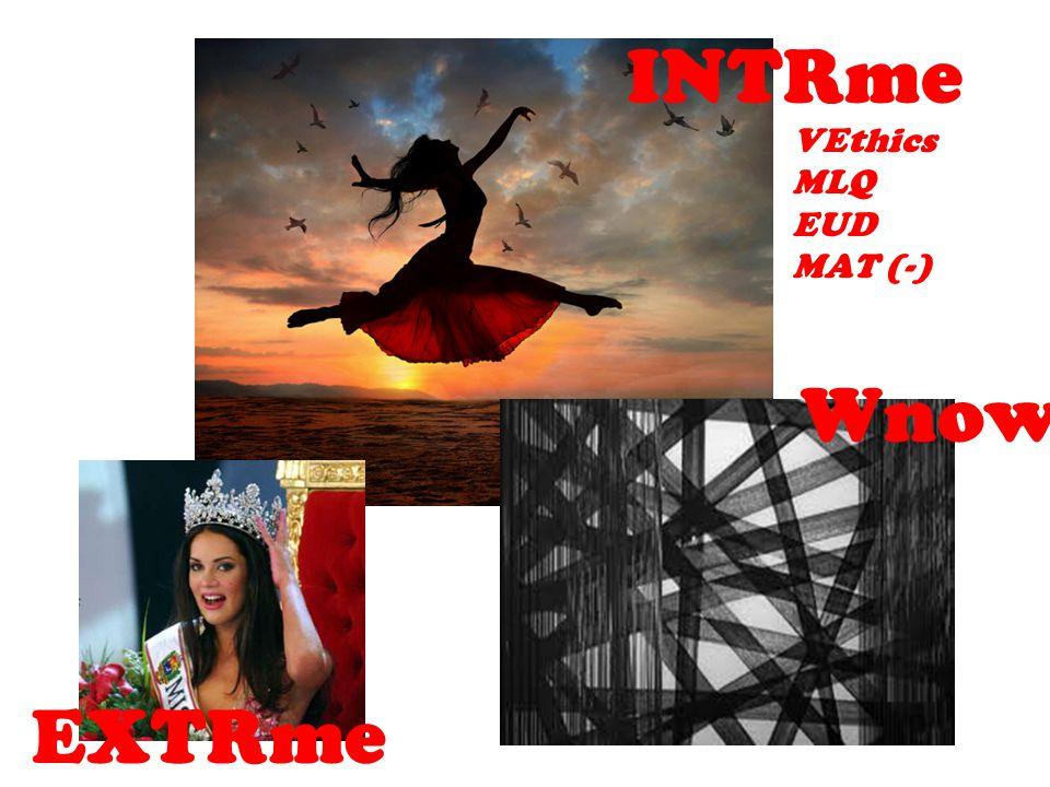 INTRme EXTRme Wnow VEthics MLQ EUD MAT (-)