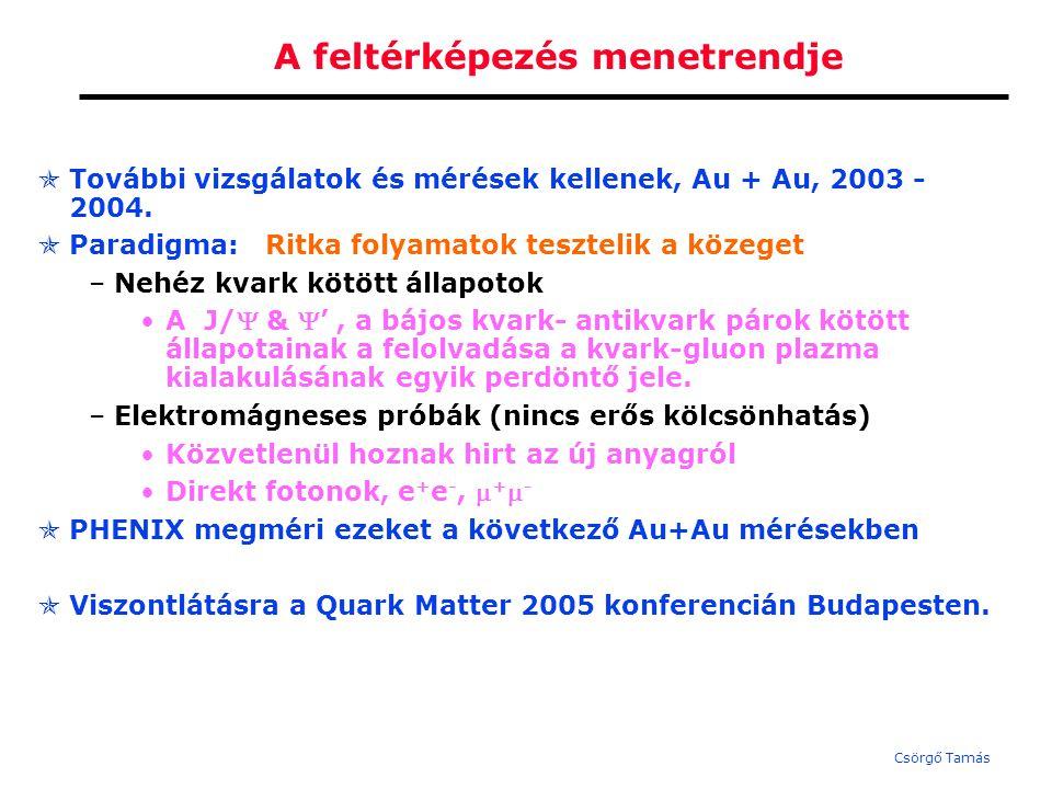 Csörgő Tamás Elméleti eredmények: Néhány fontos magyar elméleti eredmény: részecskesugarak elnyomása a RHICnél (Lévai,Papp,…) a részecske arányok kvark kombinatorikával magyarázhatóak (Zimányi, Biró, Lévai).