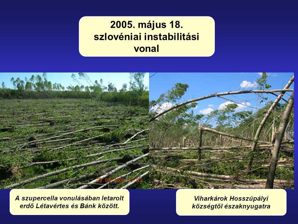 10/86 A szupercella vonulásában letarolt erdő Létavértes és Bánk között. Viharkárok Hosszúpályi községtől északnyugatra 2005. május 18. szlovéniai ins