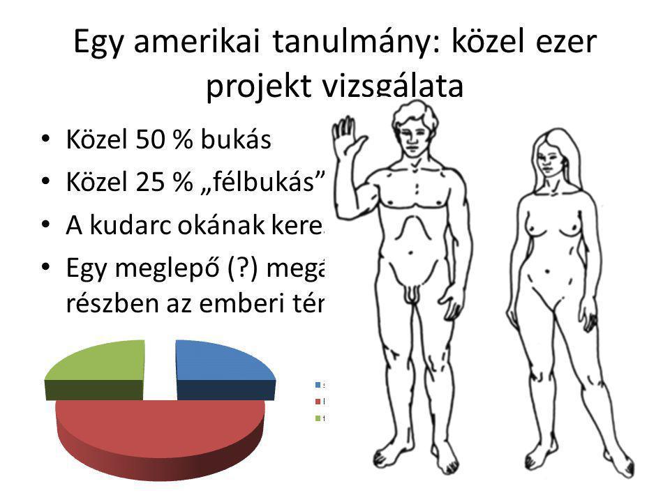 """Egy amerikai tanulmány: közel ezer projekt vizsgálata • Közel 50 % bukás • Közel 25 % """"félbukás"""" • A kudarc okának keresése • Egy meglepő (?) megállap"""