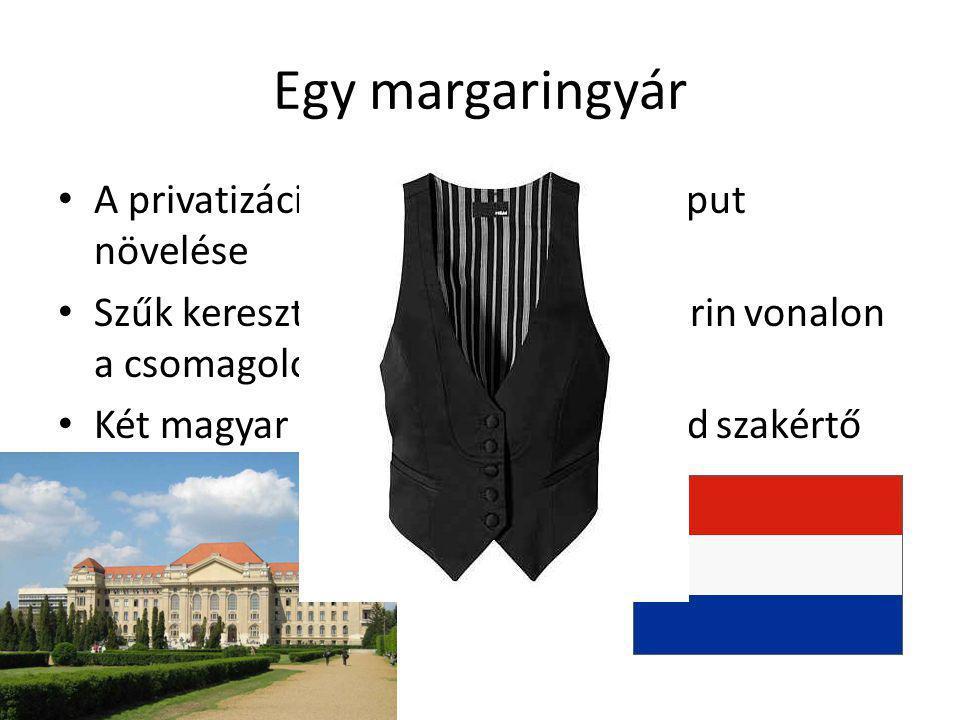 Egy margaringyár • A privatizáció után (egy) cél az output növelése • Szűk keresztmetszet a kockamargarin vonalon a csomagológép • Két magyar egyetem