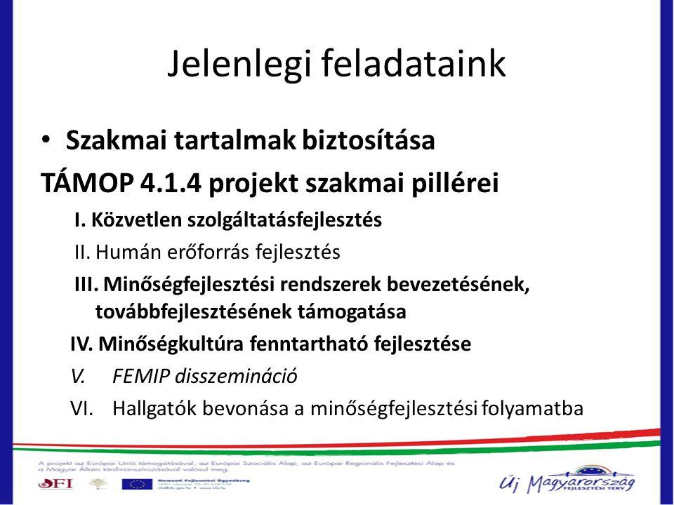 Jelenlegi feladataink • Szakmai tartalmak biztosítása TÁMOP 4.1.4 projekt szakmai pillérei I. Közvetlen szolgáltatásfejlesztés II.Humán erőforrás fejl