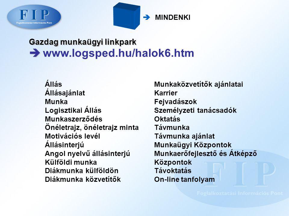  MINDENKI Gazdag munkaügyi linkpark   www.logsped.hu/halok6.htm Állás Állásajánlat Munka Logisztikai Állás Munkaszerződés Önéletrajz, önéletrajz mi