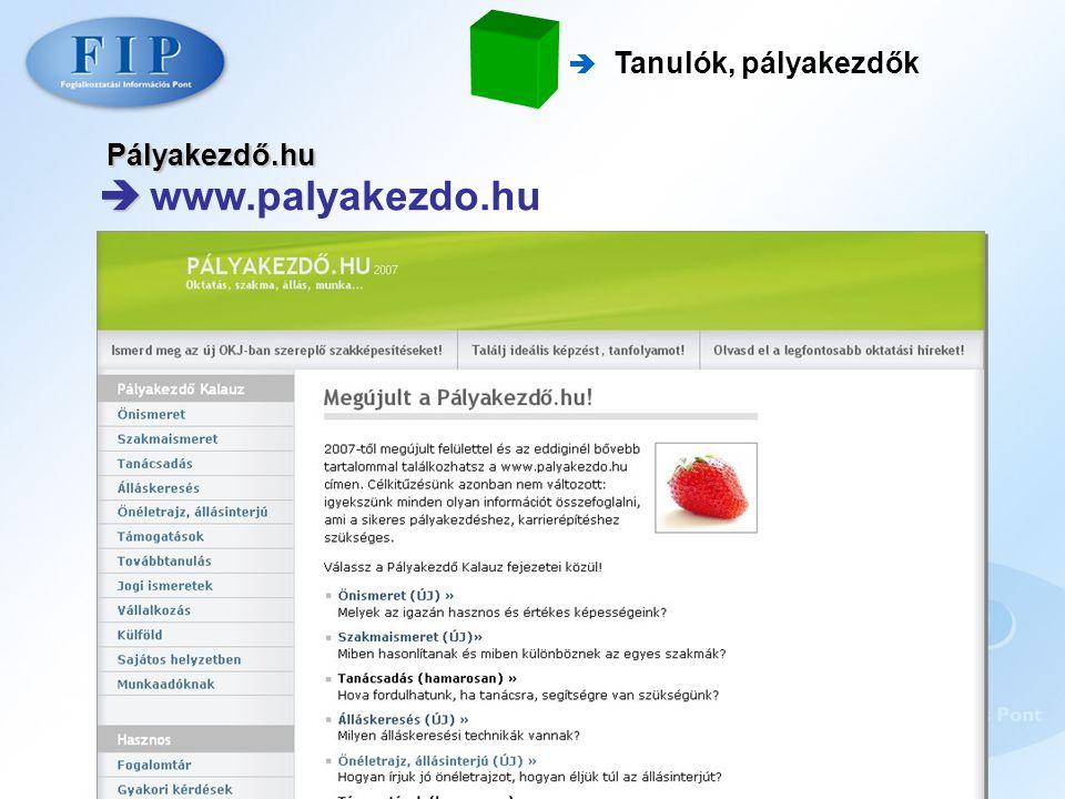 Pályakezdő.hu   www.palyakezdo.hu