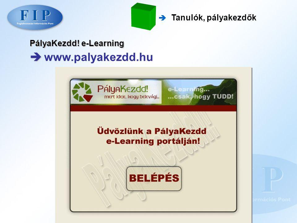  Tanulók, pályakezdők PályaKezdd! e-Learning   www.palyakezdd.hu