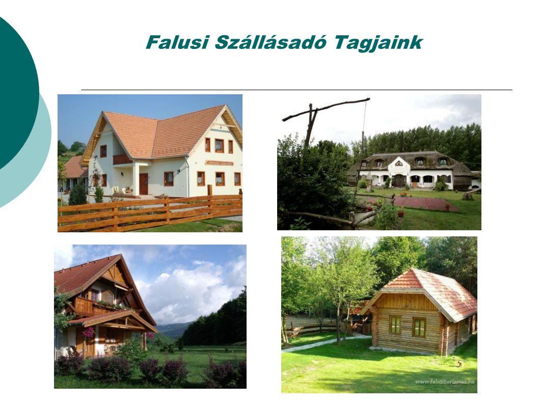 www.falusiturizmus.hu  Havi 30.000 látogató  Többezer vidéki-falusi programajánlat,  hírek ( ökohírek)  On-line foglalási rendszer  On-line SZÉP kártya elfogadás ( K&H, MKB, OTP)