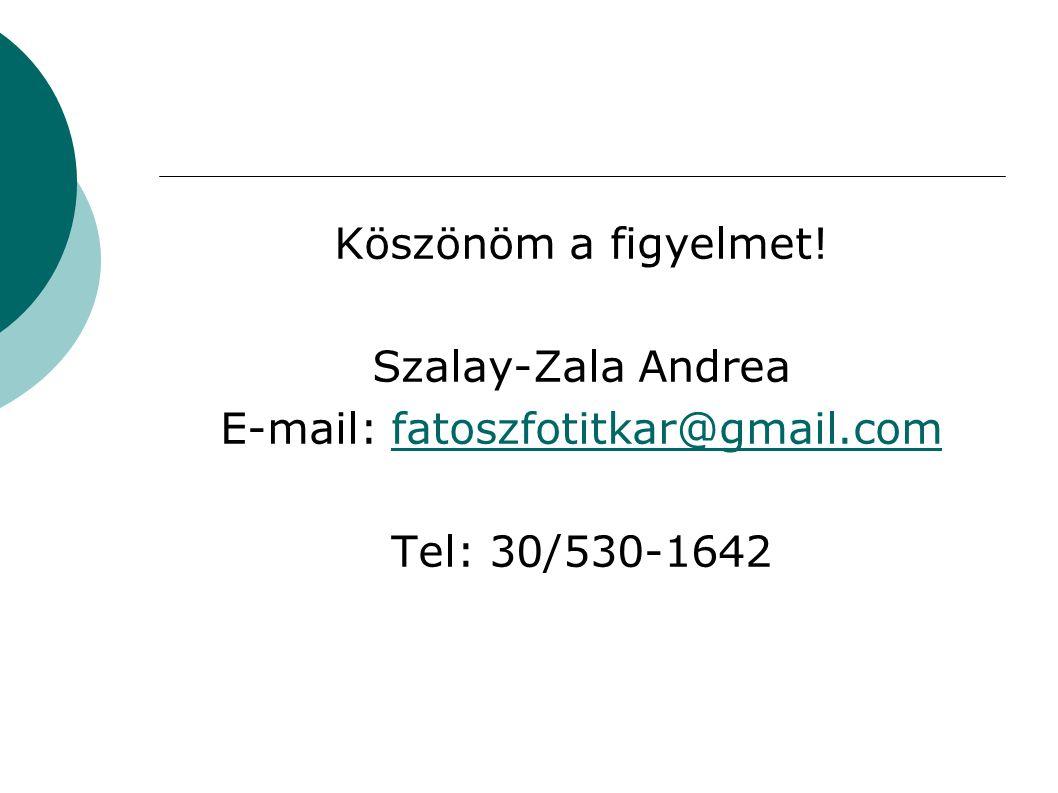 Köszönöm a figyelmet! Szalay-Zala Andrea E-mail: fatoszfotitkar@gmail.comfatoszfotitkar@gmail.com Tel: 30/530-1642