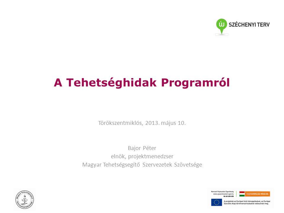 A Tehetséghidak Programról Törökszentmiklós, 2013.