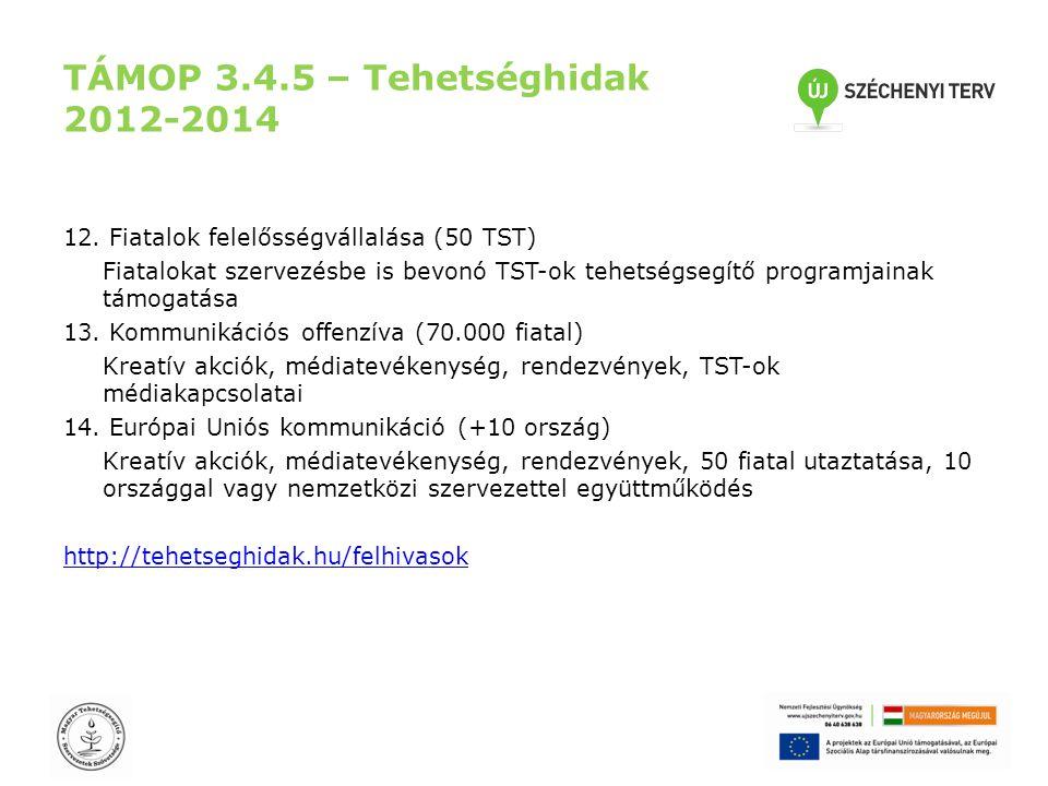 TÁMOP 3.4.5 – Tehetséghidak 2012-2014 12. Fiatalok felelősségvállalása (50 TST) Fiatalokat szervezésbe is bevonó TST-ok tehetségsegítő programjainak t