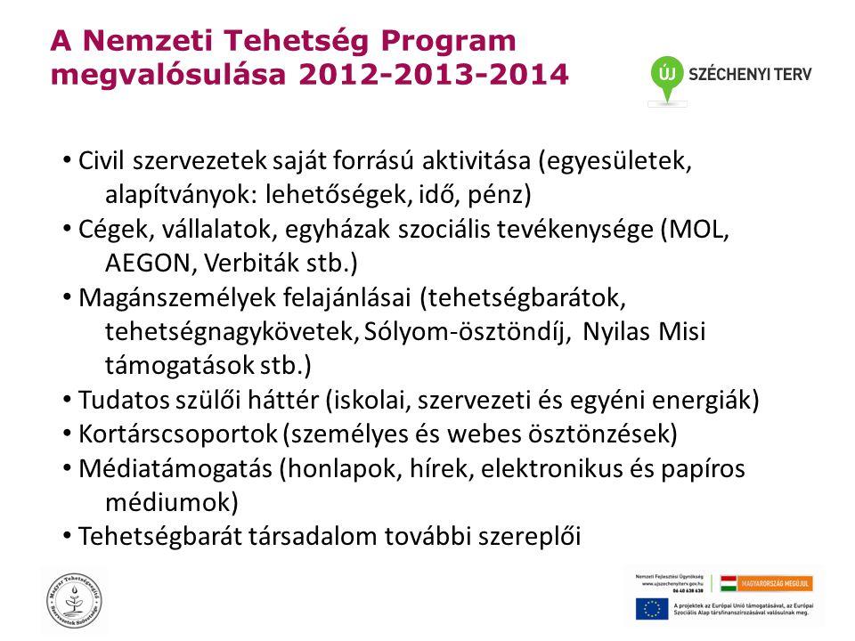 A Nemzeti Tehetség Program megvalósulása 2012-2013-2014 • Civil szervezetek saját forrású aktivitása (egyesületek, alapítványok: lehetőségek, idő, pén