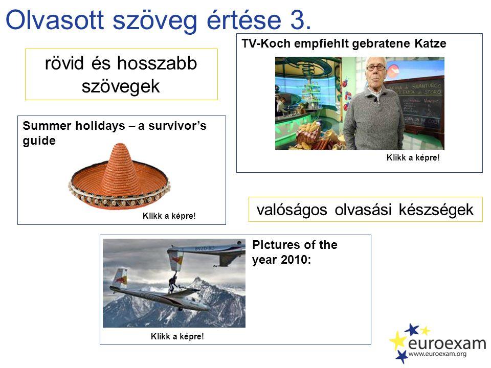 Olvasott szöveg értése 3. rövid és hosszabb szövegek Pictures of the year 2010: valóságos olvasási készségek Summer holidays  a survivor's guide Klik