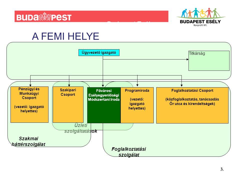 Budapest Esély szervezeti felépítés (vázlatos) Üzleti szolgáltatások Ügyvezető igazgató Titkárság Foglalkoztatási szolgálat Szakmai háttérszolgálat Pénzügyi és Munkaügyi Csoport (vezető: igazgató helyettes) Fővárosi Esélyegyenlőségi Módszertani Iroda Programiroda (vezető: igazgató helyettes) Foglalkoztatási Csoport (közfoglalkoztatás, tanácsadás Őr utca és kirendeltségek) Szakipari Csoport A FEMI HELYE