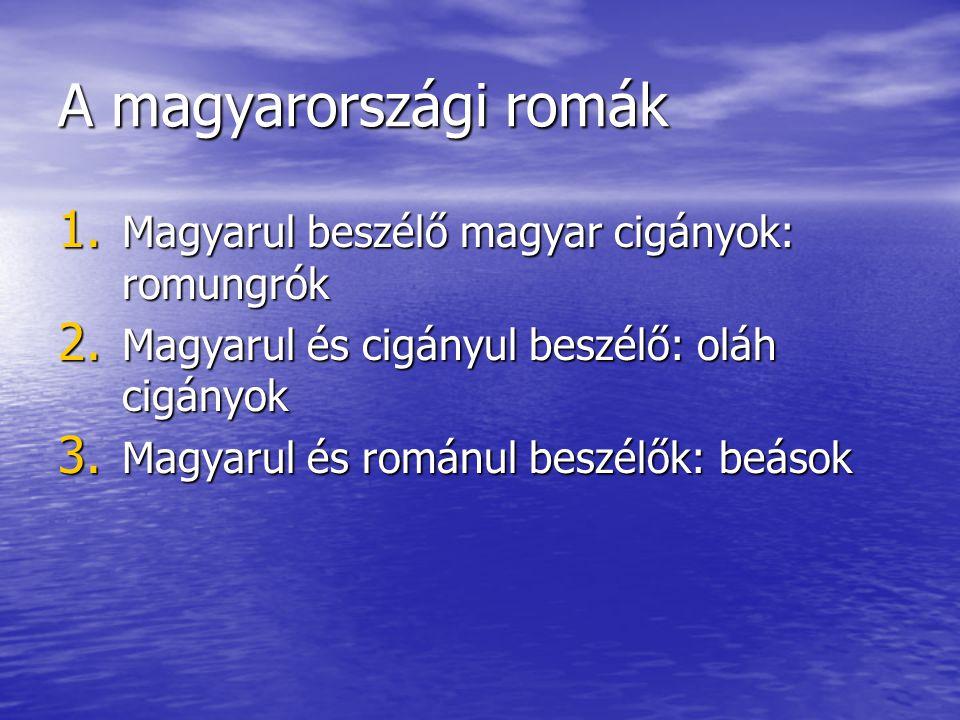 A magyarországi romák 1. Magyarul beszélő magyar cigányok: romungrók 2. Magyarul és cigányul beszélő: oláh cigányok 3. Magyarul és románul beszélők: b