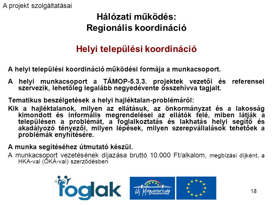 18 Hálózati működés: Regionális koordináció Helyi települési koordináció A helyi települési koordináció működési formája a munkacsoport.