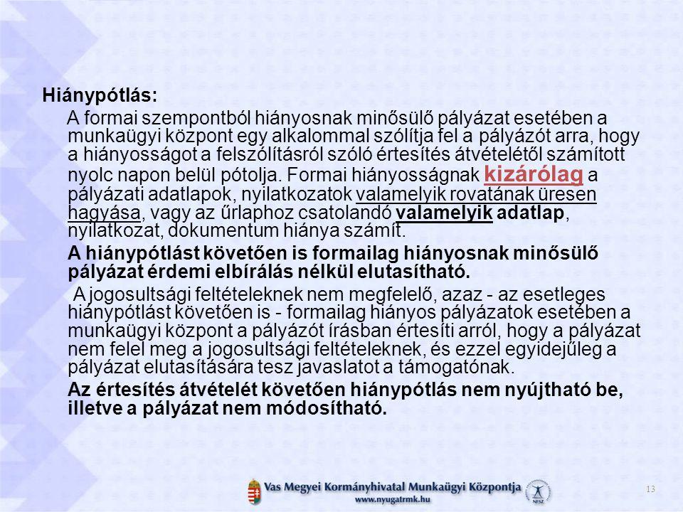 14 A feladatok ütemezése A komplett pályázati dokumentáció megtalálható a Munkaügyi Központ honlapján (www.nyugatrmk.hu), valamint a www.kormany.hu oldalon is.www.nyugatrmk.hu www.kormany.hu 2013.