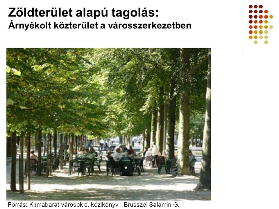 Zöldterület alapú tagolás: Árnyékolt közterület a városszerkezetben Forrás: Klímabarát városok c. kézikönyv - Brüsszel Salamin G.