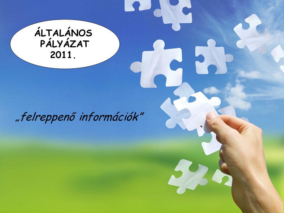 """ÁLTALÁNOS PÁLYÁZAT 2011. """"felreppenő információk"""""""
