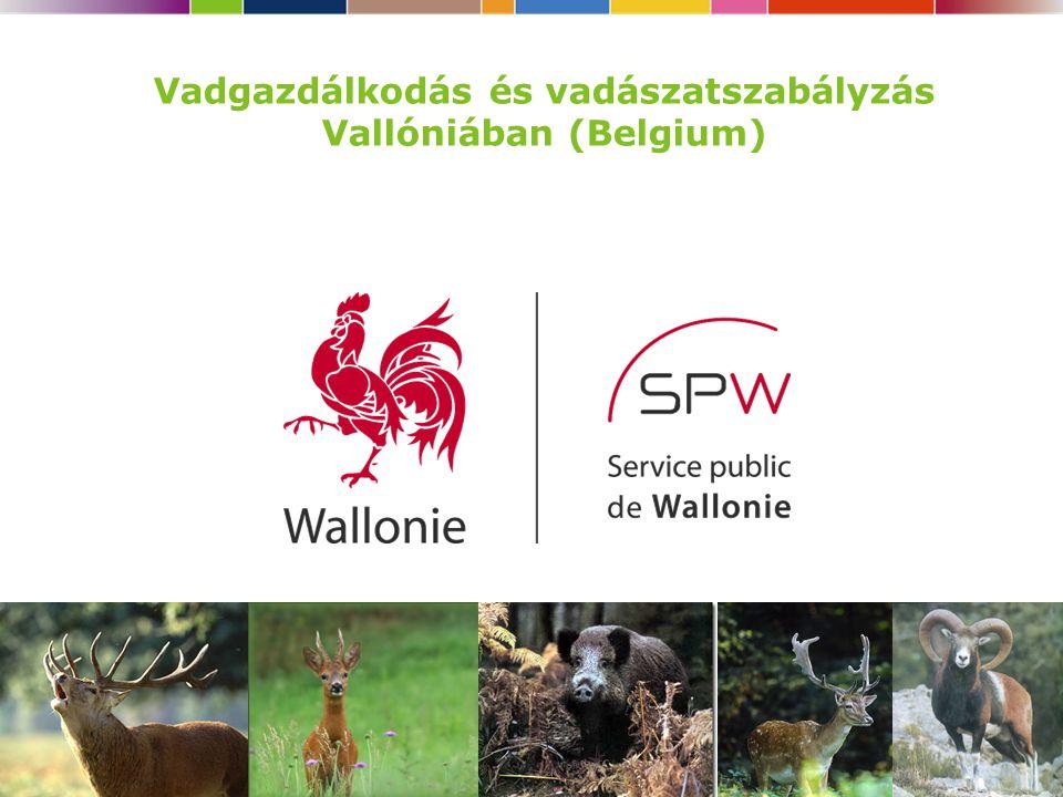 1 Vadgazdálkodás és vadászatszabályzás Vallóniában (Belgium)