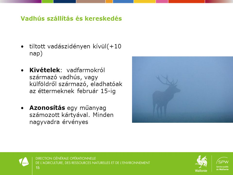 15 Vadhús szállítás és kereskedés •tiltott vadászidényen kívül(+10 nap) •Kivételek: vadfarmokról származó vadhús, vagy külföldről származó, eladhatóak