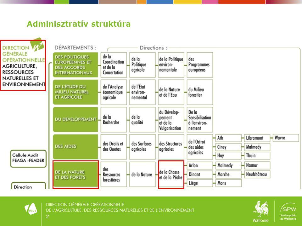 2 Adminisztratív struktúra