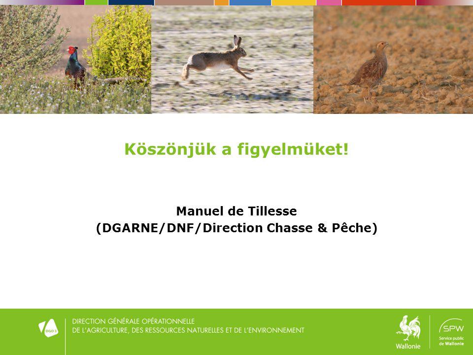 Köszönjük a figyelmüket! Manuel de Tillesse (DGARNE/DNF/Direction Chasse & Pêche)
