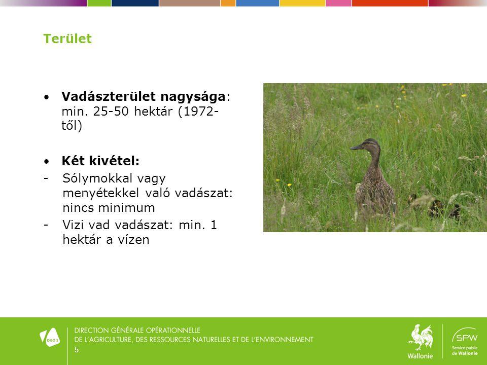 16 Vadkibocsájtás •Nagy és egyéb vad: tiltott (1994 óta) •Apróvad és Vizi vad: bizonyos feltételek mellett megengedett