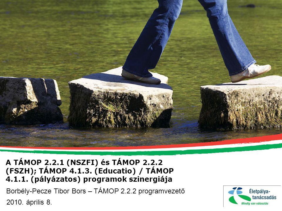 A TÁMOP 2.2.1 (NSZFI) és TÁMOP 2.2.2 (FSZH); TÁMOP 4.1.3. (Educatio) / TÁMOP 4.1.1. (pályázatos) programok szinergiája Borbély-Pecze Tibor Bors – TÁMO
