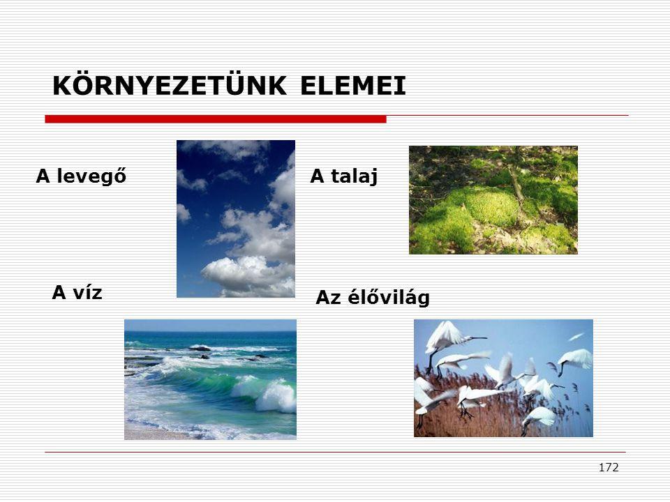 172 KÖRNYEZETÜNK ELEMEI A levegő Az élővilág A talaj A víz