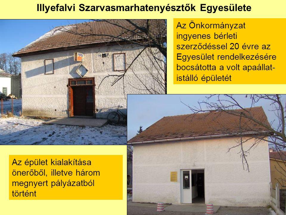 Illyefalvi Szarvasmarhatenyésztők Egyesülete • REBIAT Program (Svájc) 6.000 euró •Szülőföld Alap (Magyarország) 1.200.000 forint • 785/2006-os kormánytámogatás (Románia) 22.500 lej • önerő: 15.500 lej • önkormányzati segítség (hatfős kőművescsoport kéthavi munkája) kb.