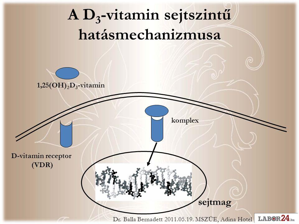 A D 3 -vitamin sejtszintű hatásmechanizmusa 1,25(OH) 2 D 3 -vitamin D-vitamin receptor (VDR) sejtmag komplex Dr.