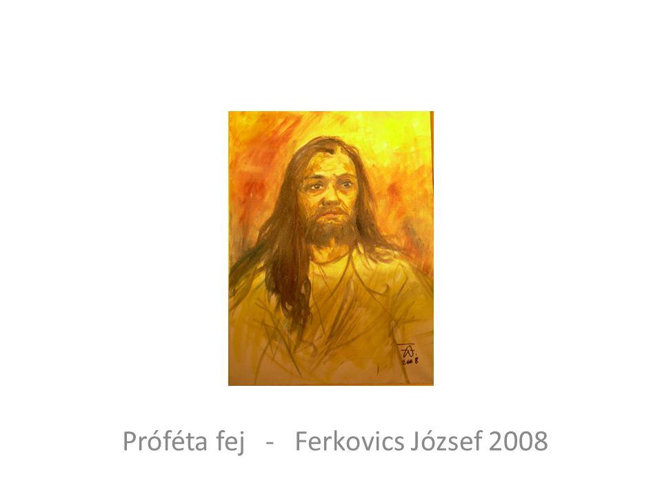 Próféta fej - Ferkovics József 2008