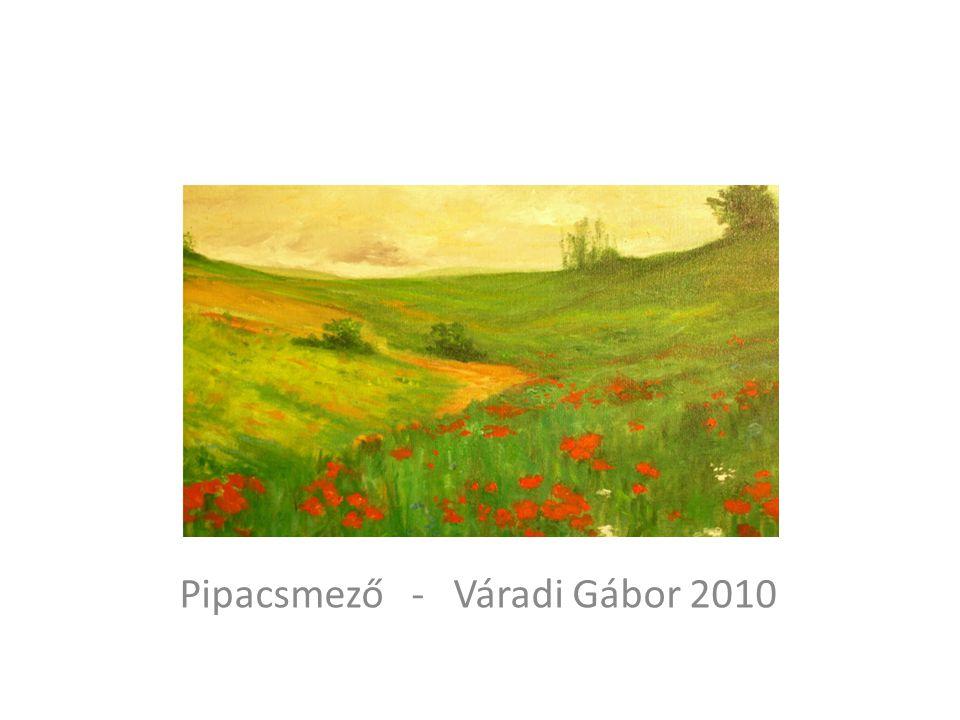 Pipacsmező - Váradi Gábor 2010