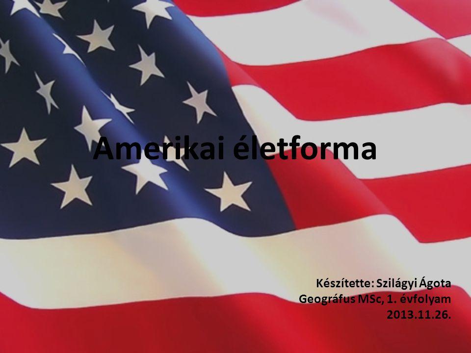 Amerikai életforma Készítette: Szilágyi Ágota Geográfus MSc, 1. évfolyam 2013.11.26.