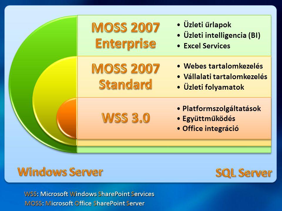•Üzleti űrlapok •Üzleti intelligencia (BI) •Excel Services •Webes tartalomkezelés •Vállalati tartalomkezelés •Üzleti folyamatok Platformszolgáltatások