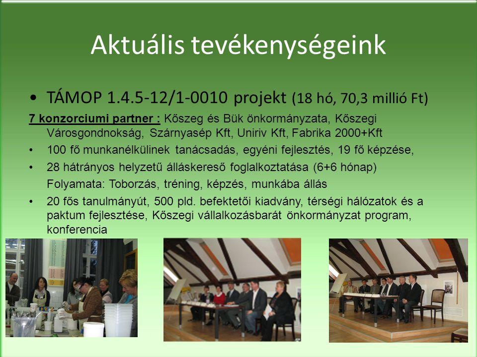 Aktuális tevékenységeink •TÁMOP 1.4.5-12/1-0010 projekt (18 hó, 70,3 millió Ft) 7 konzorciumi partner : Kőszeg és Bük önkormányzata, Kőszegi Városgondnokság, Szárnyasép Kft, Uniriv Kft, Fabrika 2000+Kft •100 fő munkanélkülinek tanácsadás, egyéni fejlesztés, 19 fő képzése, •28 hátrányos helyzetű álláskereső foglalkoztatása (6+6 hónap) Folyamata: Toborzás, tréning, képzés, munkába állás •20 fős tanulmányút, 500 pld.