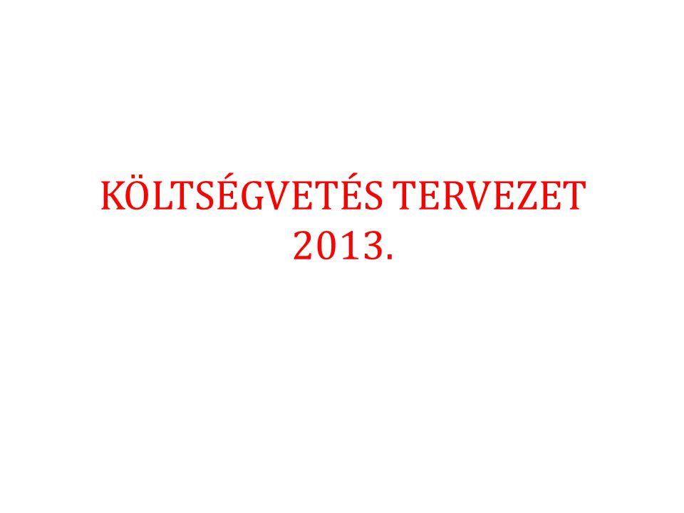 KÖLTSÉGVETÉS TERVEZET 2013.