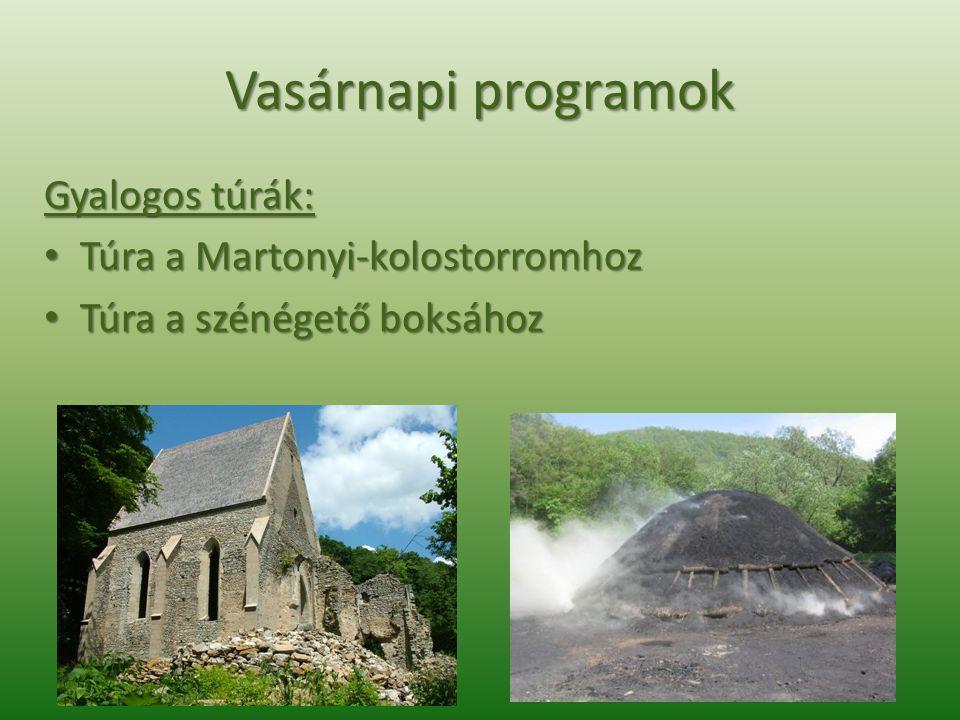 Vasárnapi programok Gyalogos túrák: • Túra a Martonyi-kolostorromhoz • Túra a szénégető boksához
