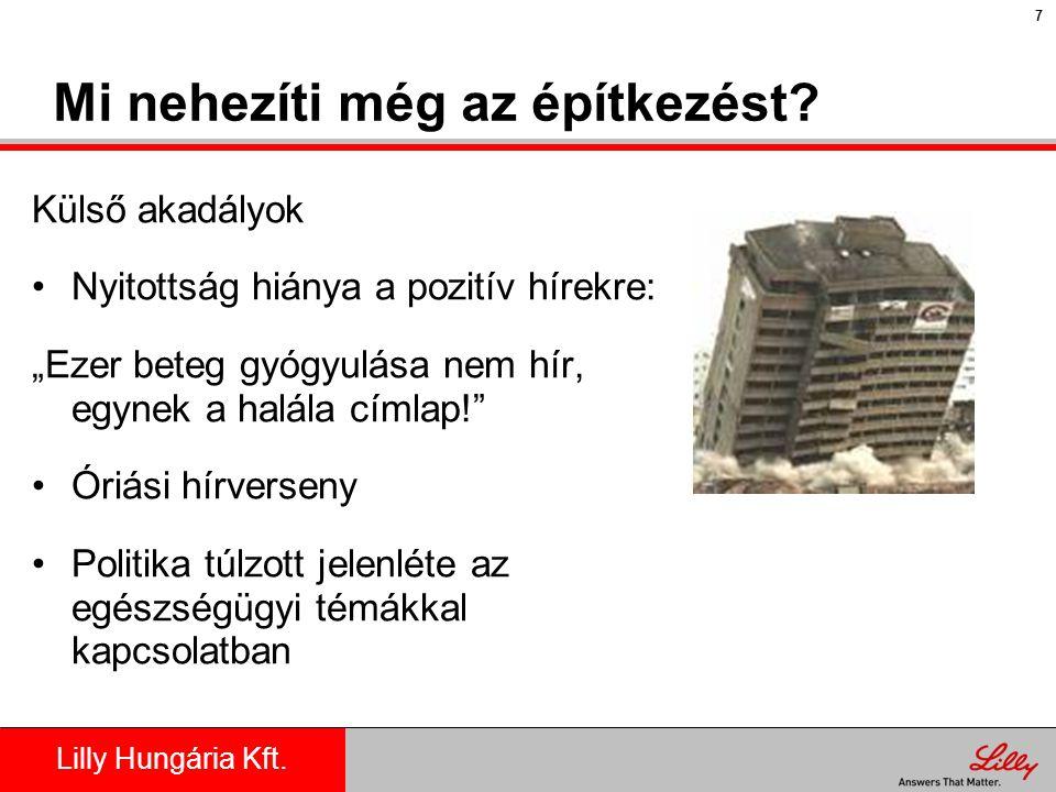 Lilly Hungária Kft.Miből lehet építkezni.