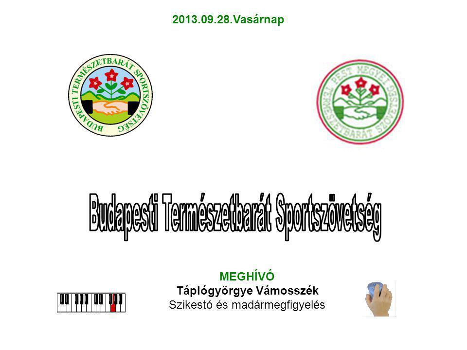MEGHÍVÓ Tápiógyörgye Vámosszék Szikestó és madármegfigyelés 2013.09.28.Vasárnap